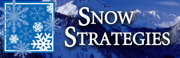 Snow Strategies - Clearing Pathways to Your Success